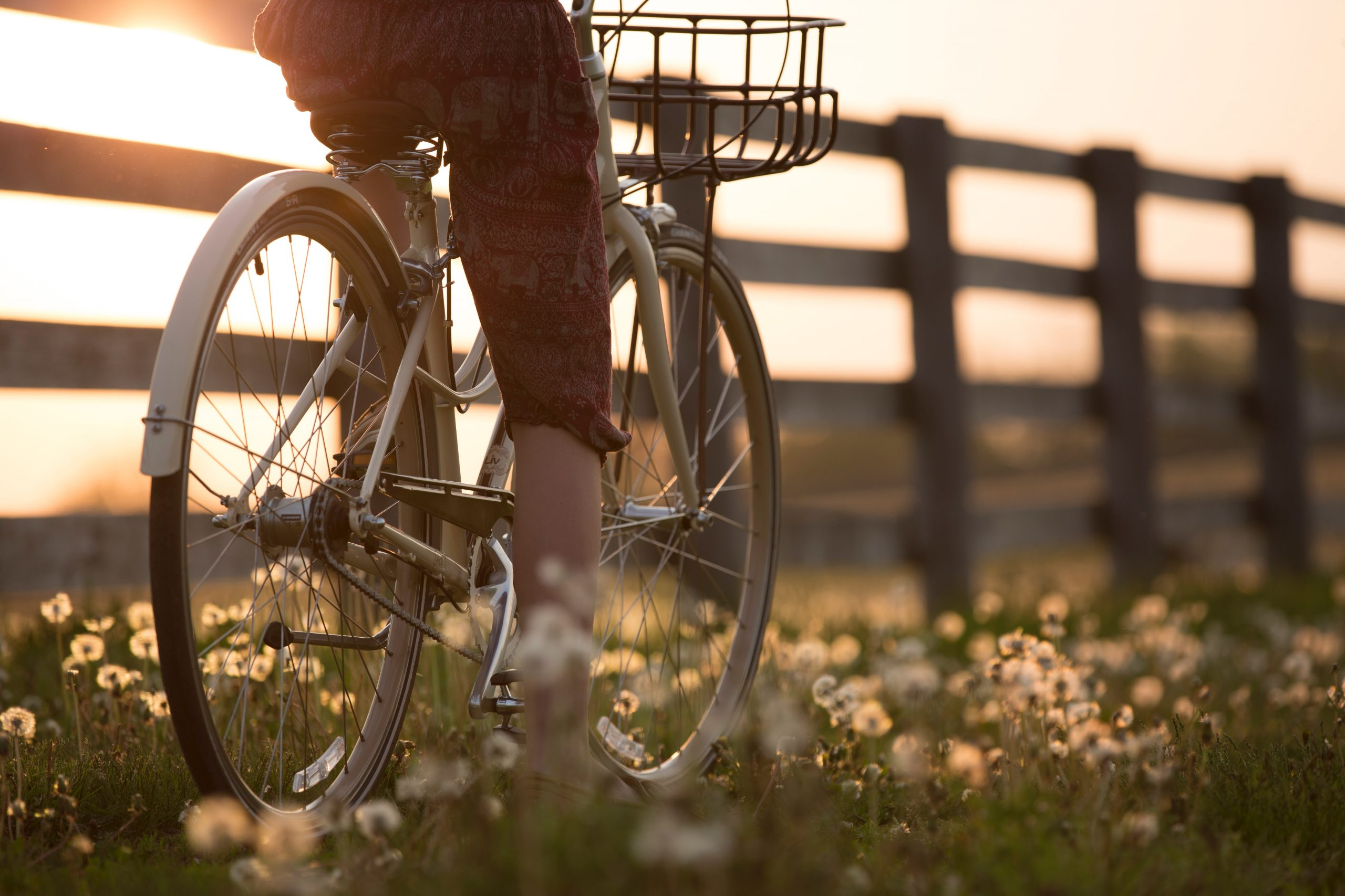 persona su bicicletta appoggiata a steccato